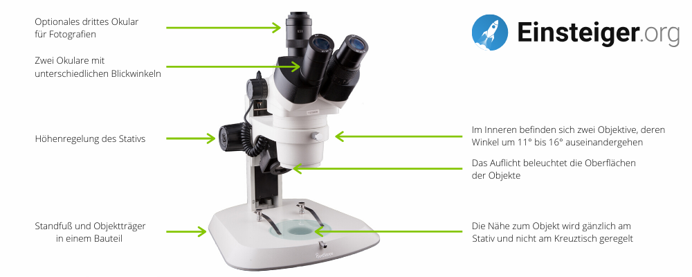 Aufbau eines Stereomikroskops