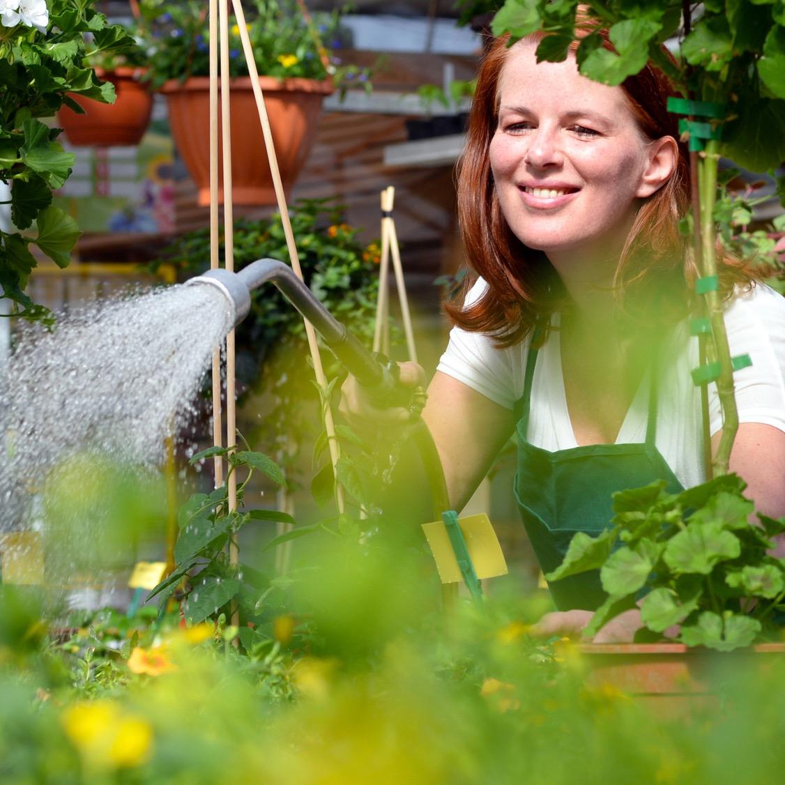 Hobby-Gärtnerin beim Gießen