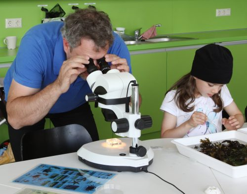 Vater und Tochter beim Mikroskopieren