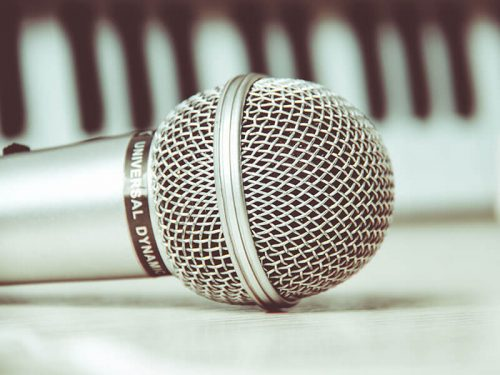 Korb eines Mikrofons